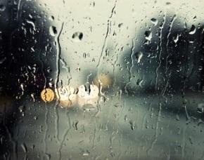 nekta-rain