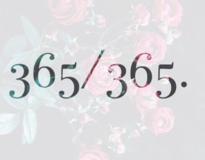 365 NEKTA RO