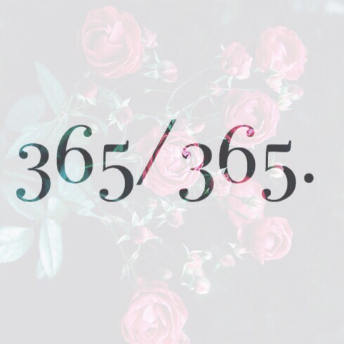 365 NEKTA