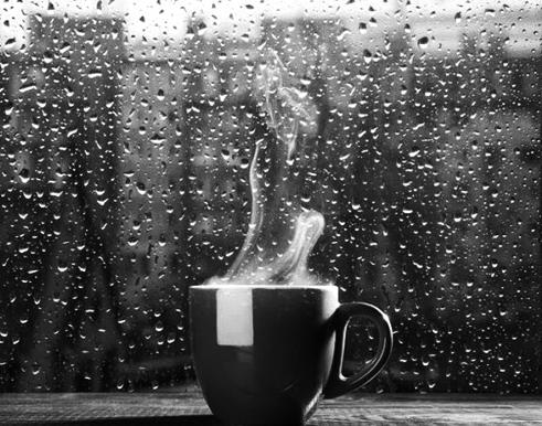 nekta ploaie cafa